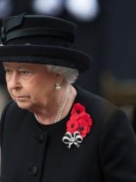 Saiba o que são as famosas papoulas vermelhas usadas pelos ingleses | Londonices: Dicas de Londres