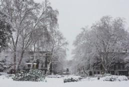 Inverno em Londres com Neve