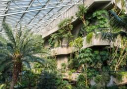 Conservatório Barbican Centre Londres