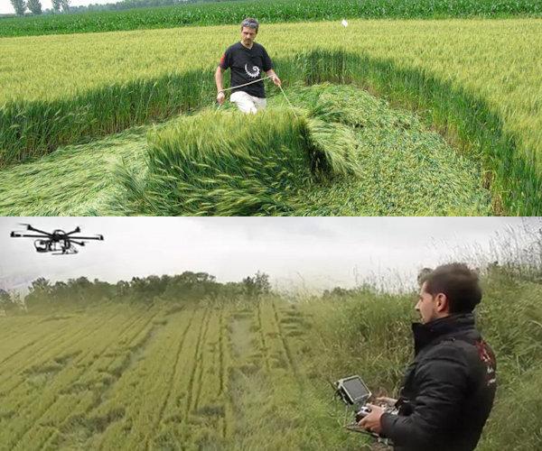 Uomo all'opera nel realizzare un cerchio nel grano
