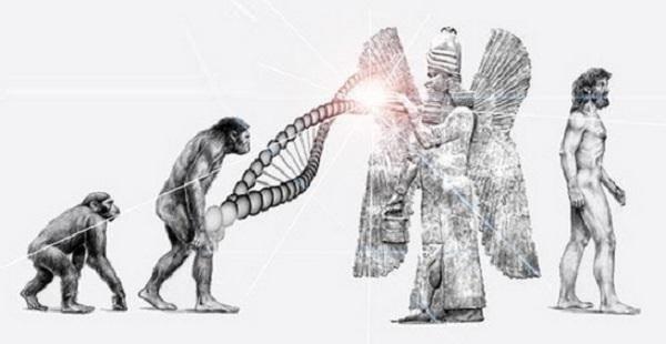 Gli Anunnaki mischiarono il loro patrimonio genetico