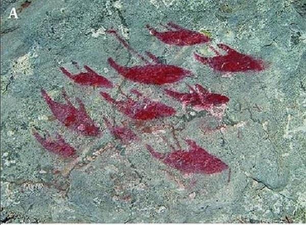 pitture rupestri di balene