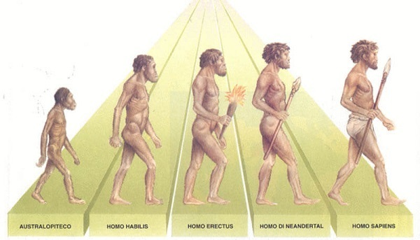 evoluzione-degli essere umani