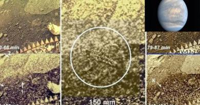 Scienziato russo ha affermato di aver trovato vita extraterrestre su Venere