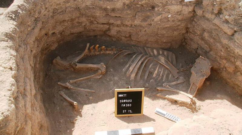 Ritrovata la città perduta di Luxor, vecchia di più di 3000 anni