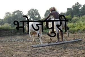 development of Bhojpuri language