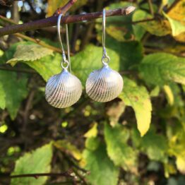 Chilli Designs cockle drop earrings