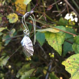 Chilli Designs limpet shell drop earrings