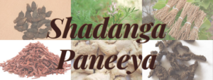 Shadanga Paneeya