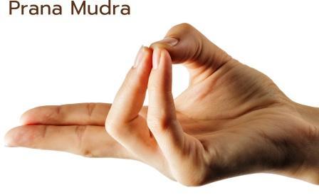 Prana Mudra