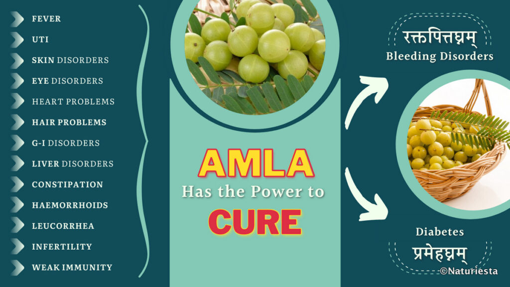 Power of Amla