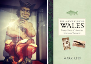 A curious night at Swansea Museum with Mark Rees