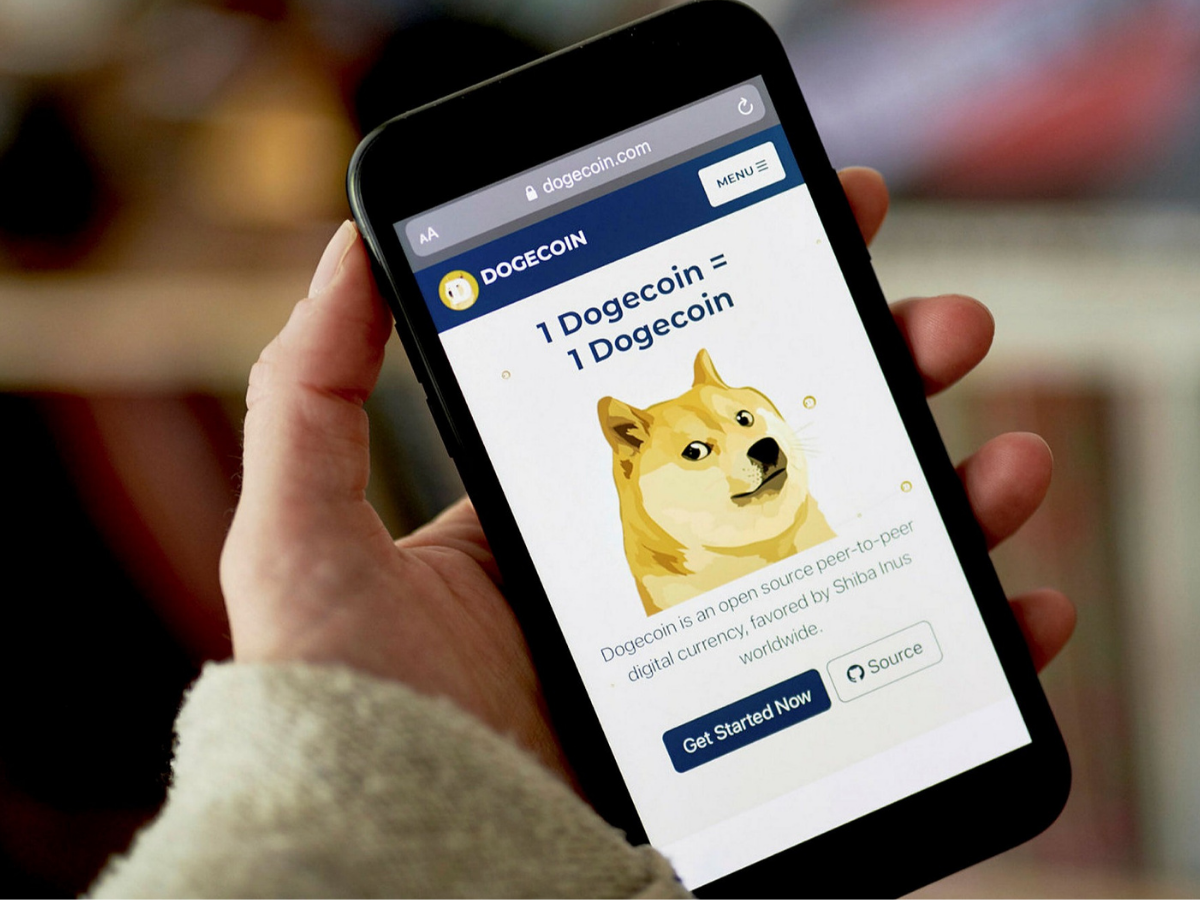 The Rise and Fall of Dogecoin