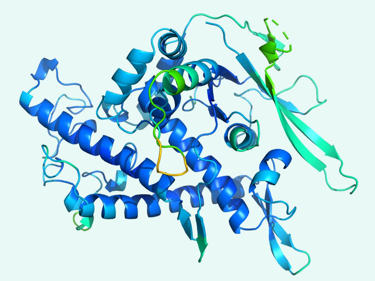 Developments In Healthcare AI: Protein Predictions