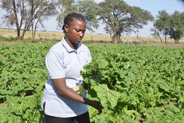 Nthabiseng Kgobokoe