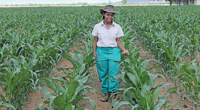 Top 20 South African Women Farmers