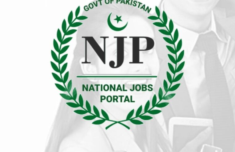 Government Launches National Job Portal