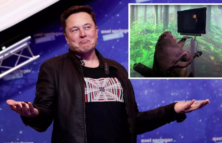 WATCH – Elon Musk Wires Up Monkey's Brain with Neuralink Implant to Play Video Games