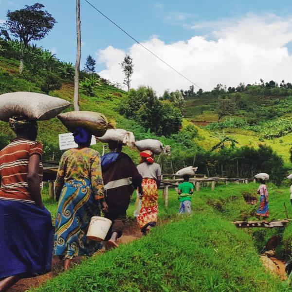 ruanda-mahembe-#84-filtre-kahve-1