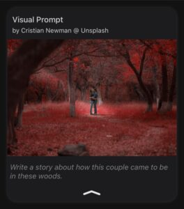 Image Writing Prompt - Couple In The Woods