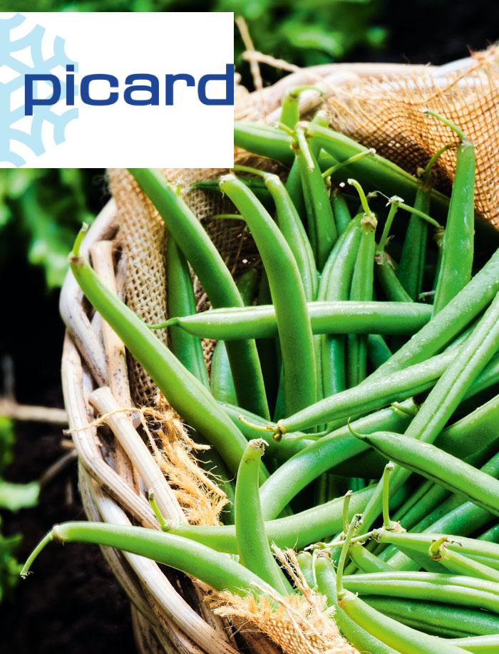 Copywriter Cécile Maslakian Portfolio Contenus Web Picard article Bio et cultivés près de chez vous Picard fait le pari du bio local équitable