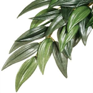 Exo Terra Ruscus Silk Plant