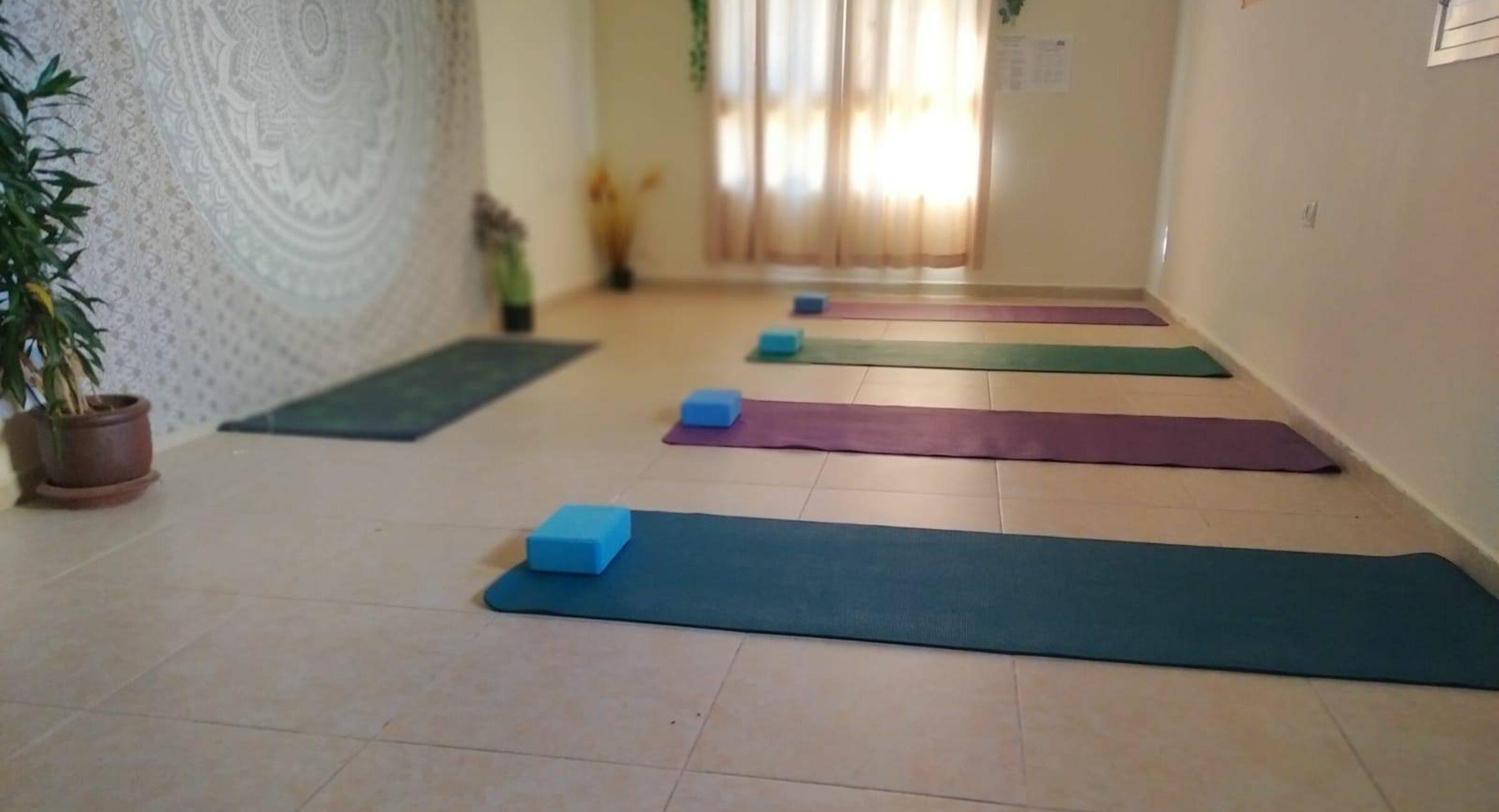Sarah Friedlander - Yoga & Wellness Coach