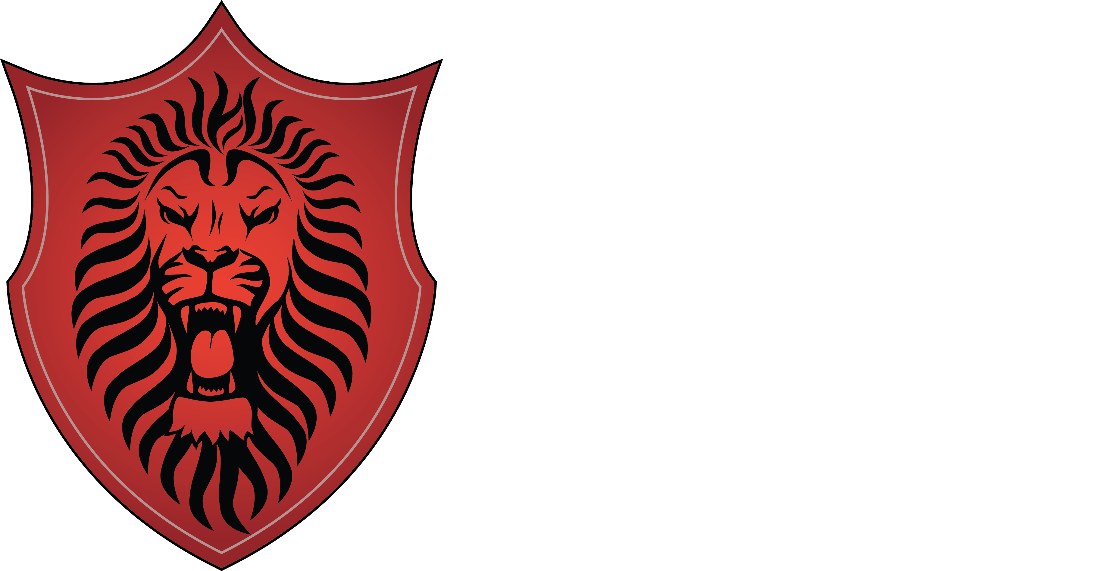RNS Technology Services