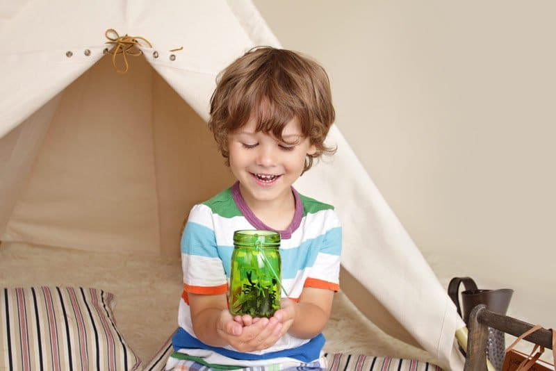 child learning about insects