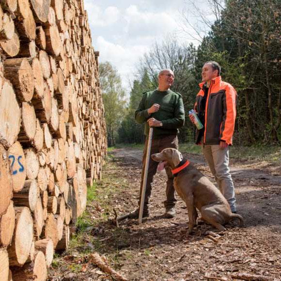 Forstdienstleistungen