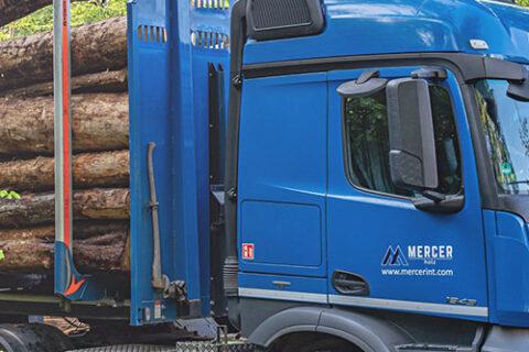 Zwei Mercer Holz LKWs, geparkt und beladen mit Rotholz, auf einer Baustelle im Harz