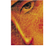 Icon Logo PNG