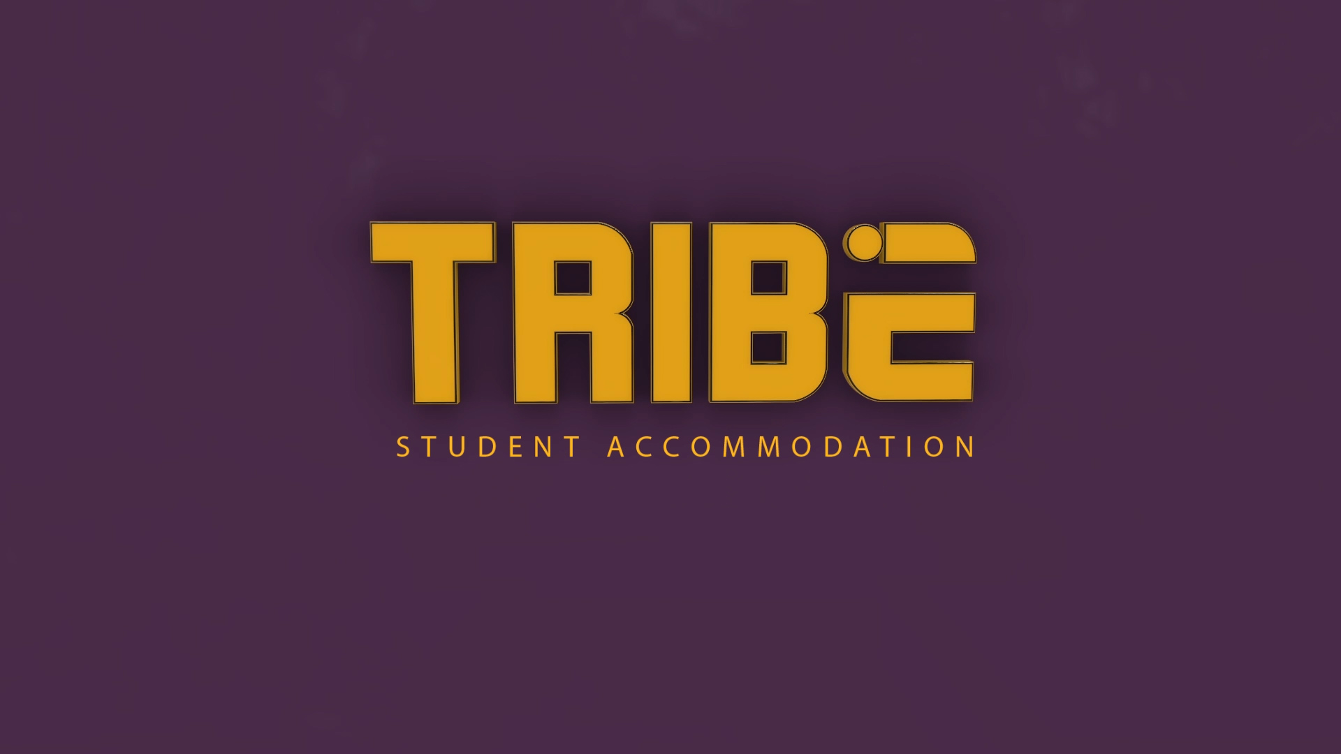 Tribe Stays Launch Video