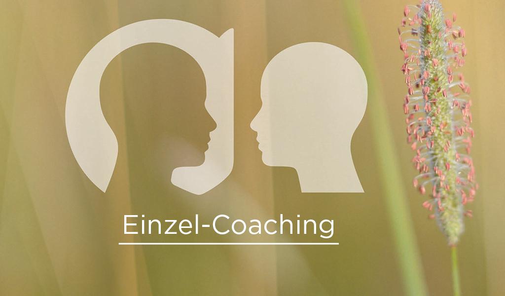 Einzel-Coaching