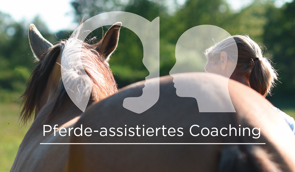 Pferde-assistiertes Coaching