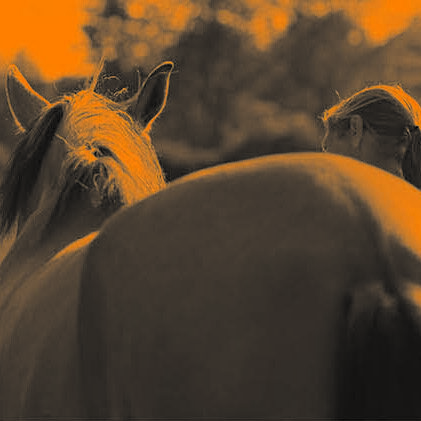 Pferde-assistiertes Coaching