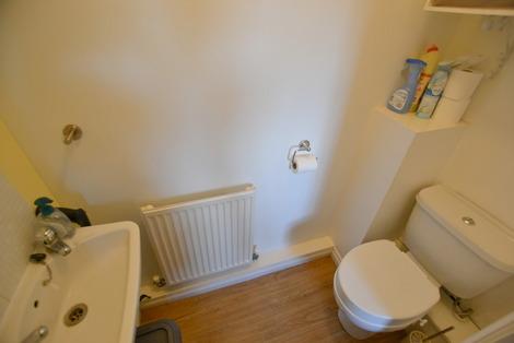 Elm WC