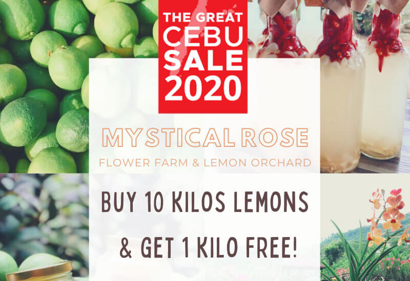 Mystical Rose Flower Farm & Lemon Orchard offers buy 10 kilos of lemon and get 1 kilo free promo