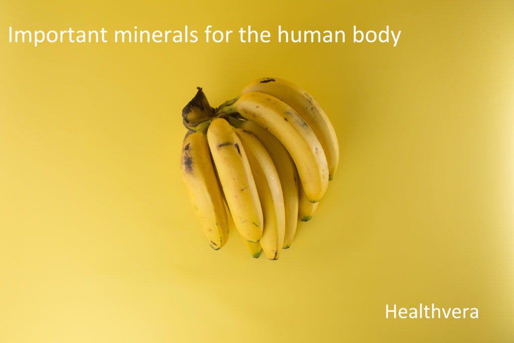 Important minerals for the human body