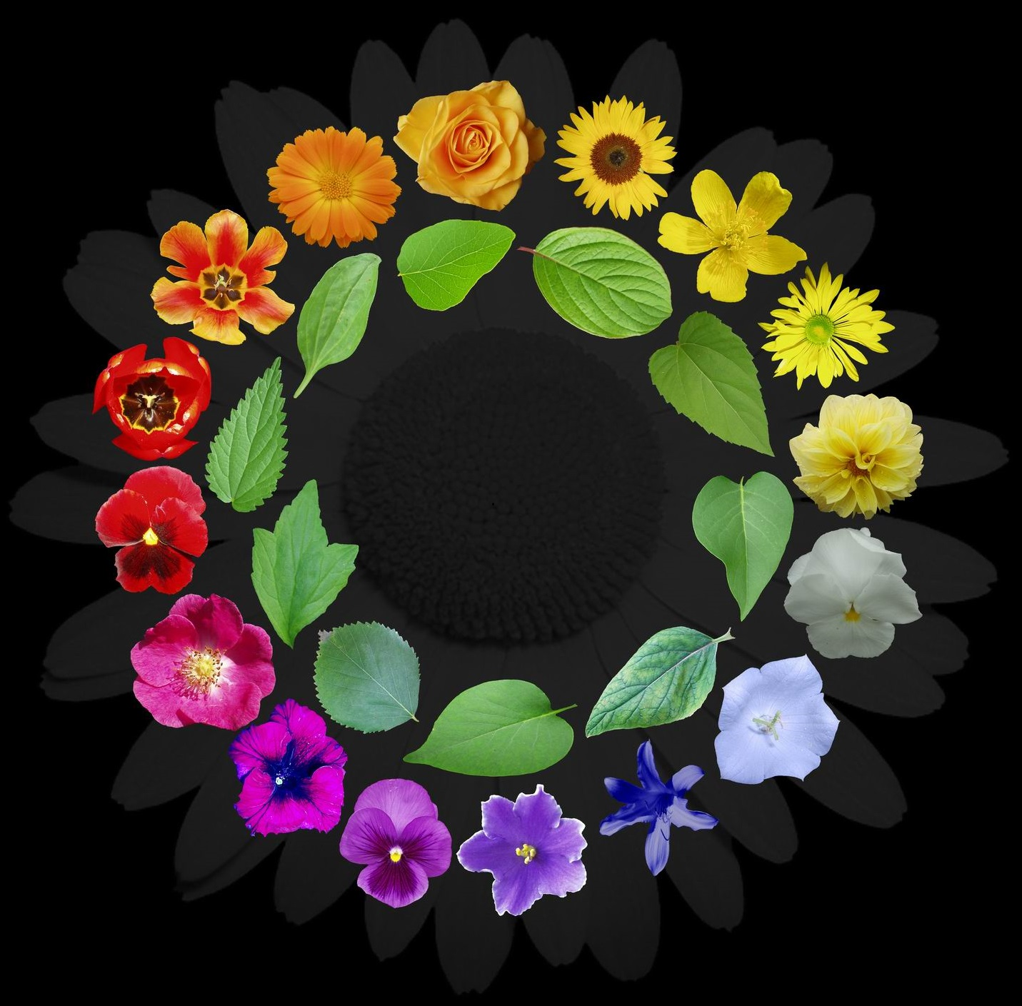 ring_of_flowers