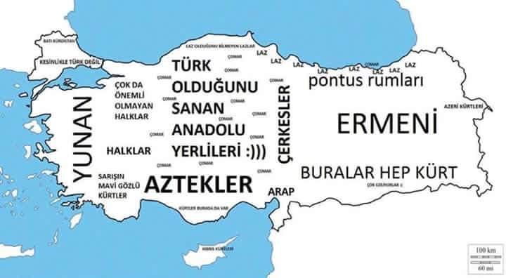 Bilim Dünyasını Sarsan Keşif: Türkiye Halkları Organizması