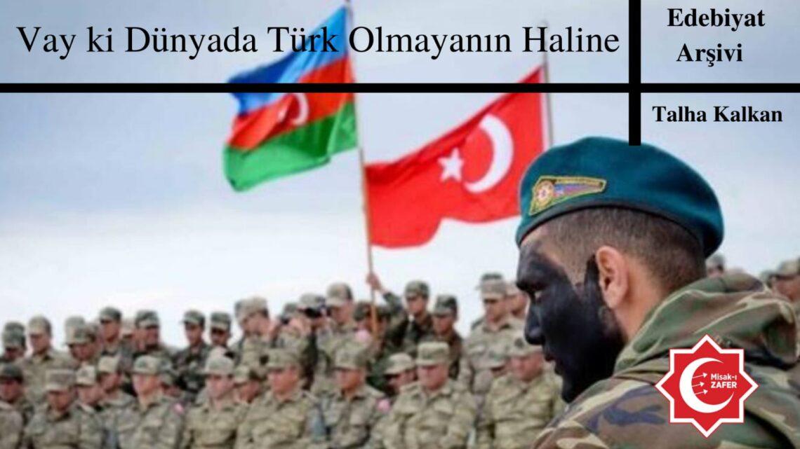Vay ki Dünya da Türk olmayanın haline
