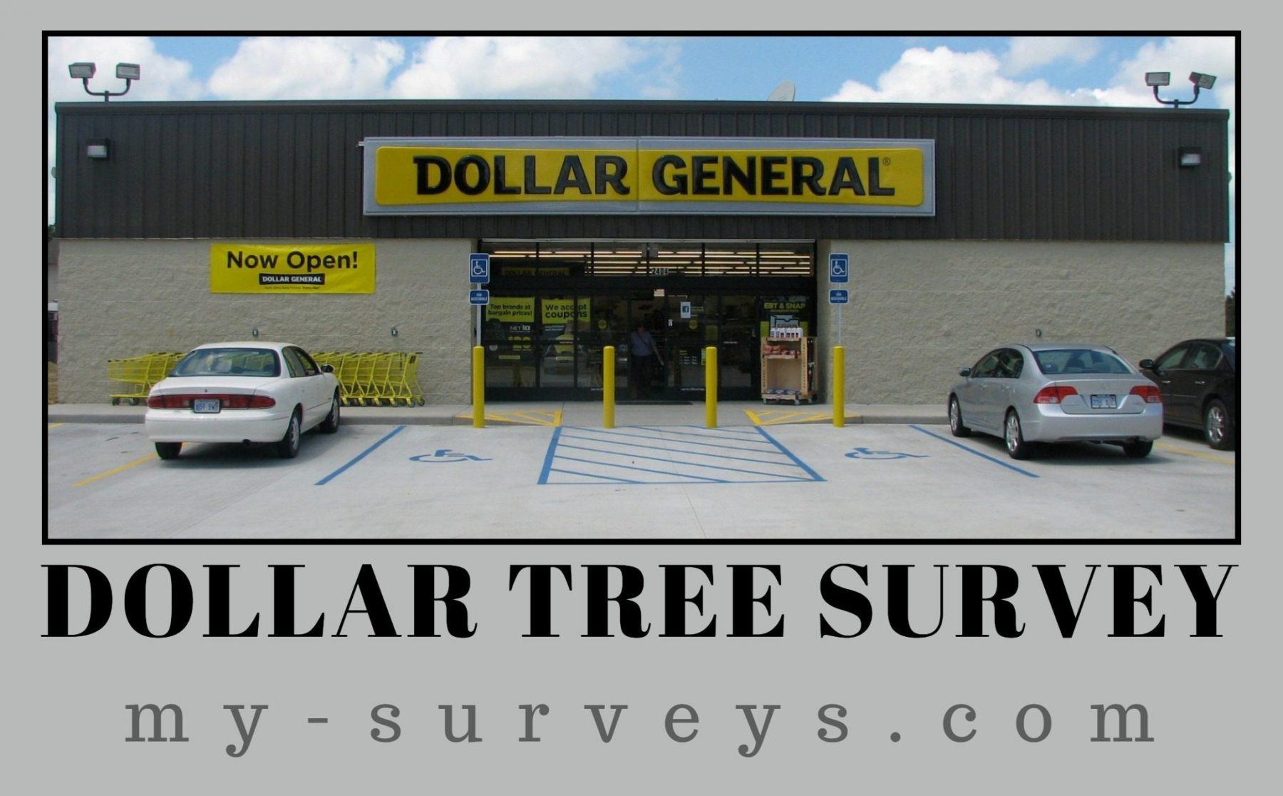 Dollar Tree Survey