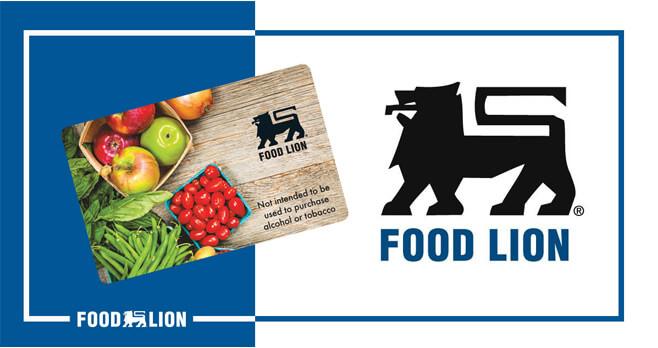 food lion survey