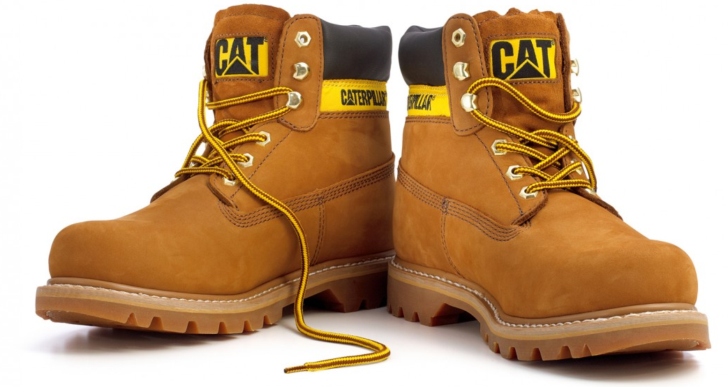 FREE PAIR OF CAT BOOTS