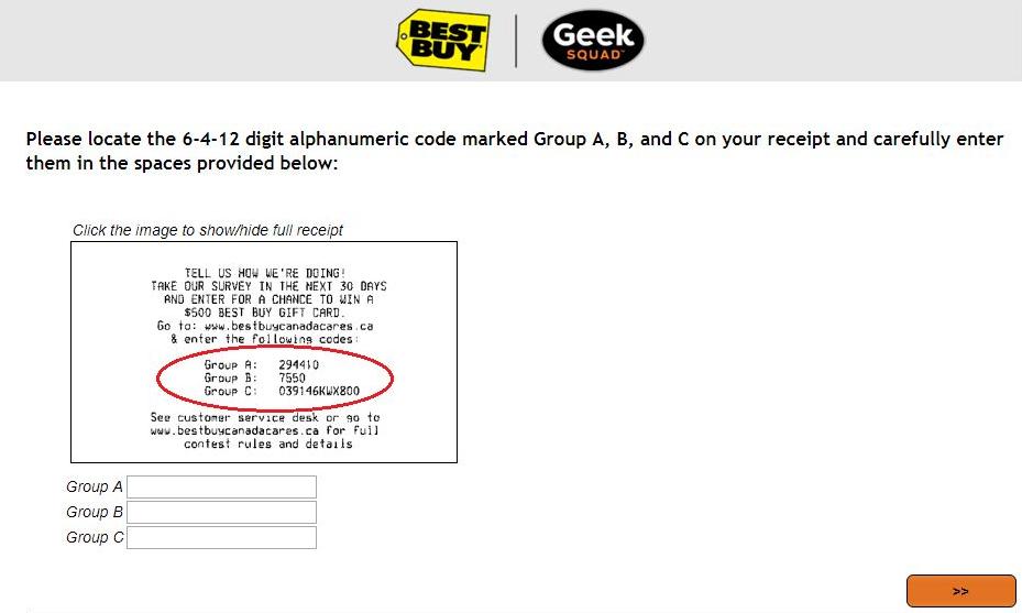 Geek Squad Survey