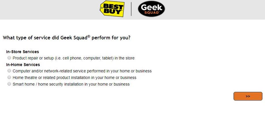 Geek Squad Site Survey