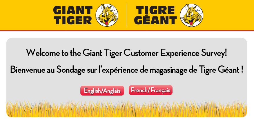 www.gianttiger.com/survey