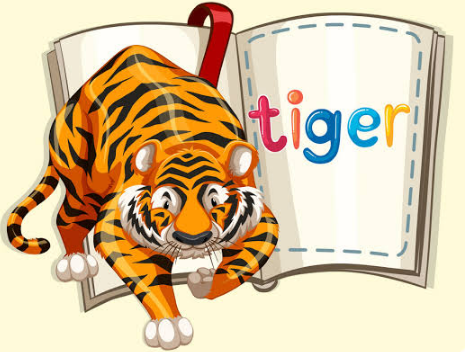 Giant Tiger Survey Rules