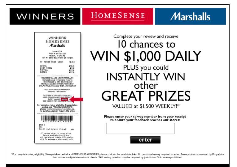 Winners Homesense Guest Survey
